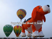 Link to Balloon Festival Images